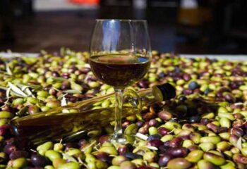 Come scegliere il miglior olio d'oliva? Guida all'acquisto