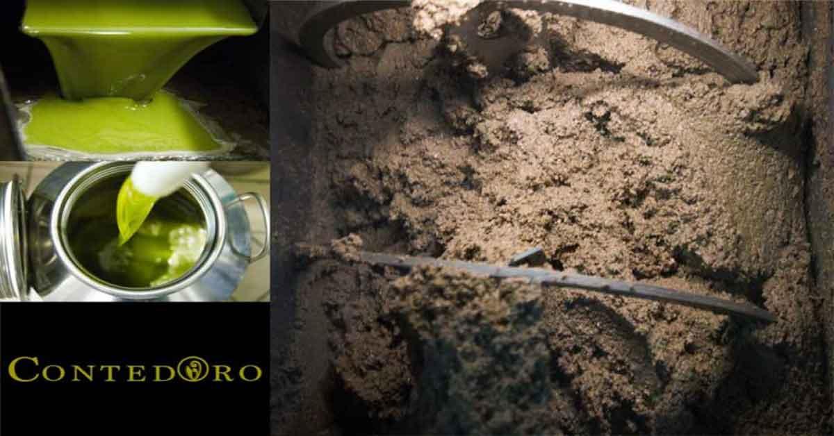 Quali sono i metodi di estrazione dell'olio d'oliva?