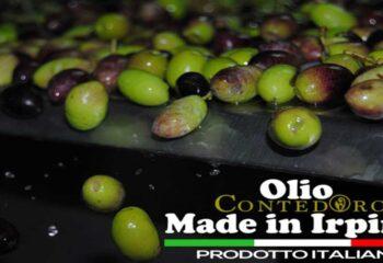 Olio Extravergine d'Oliva Italiano, Come Riconoscerlo e Cosa Sapere in Merito
