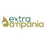 Extra Campania 2020 | 1° Classificato Fruttato Medio-Intenso